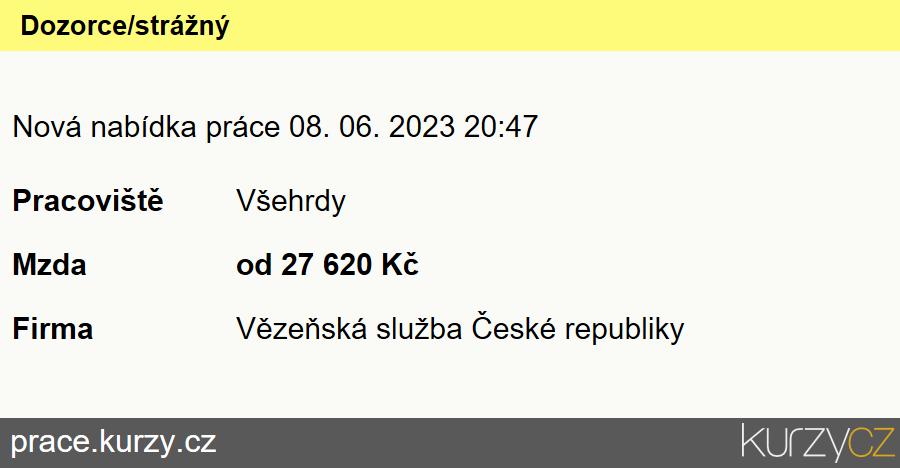 Dozorce/strážný, Referenti a vrchní referenti Vězeňské služby ČR